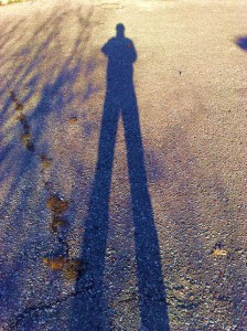 Image of long legs cast by a shadow